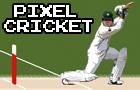 Pixel Cricket Multiplayer
