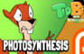 TidBits 2 Photosynthesis